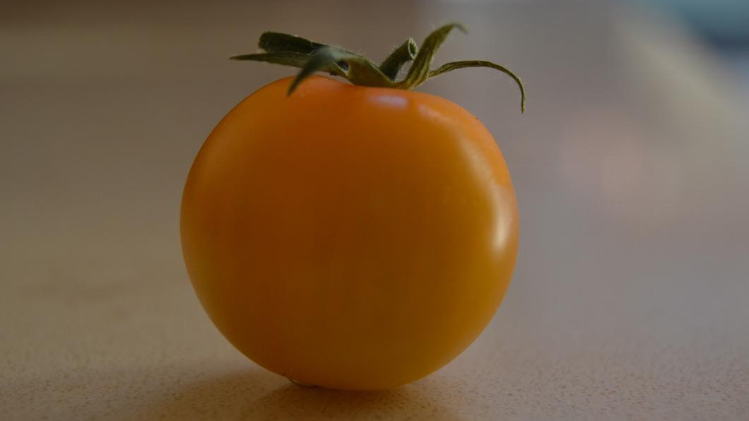Pomidoro giallo