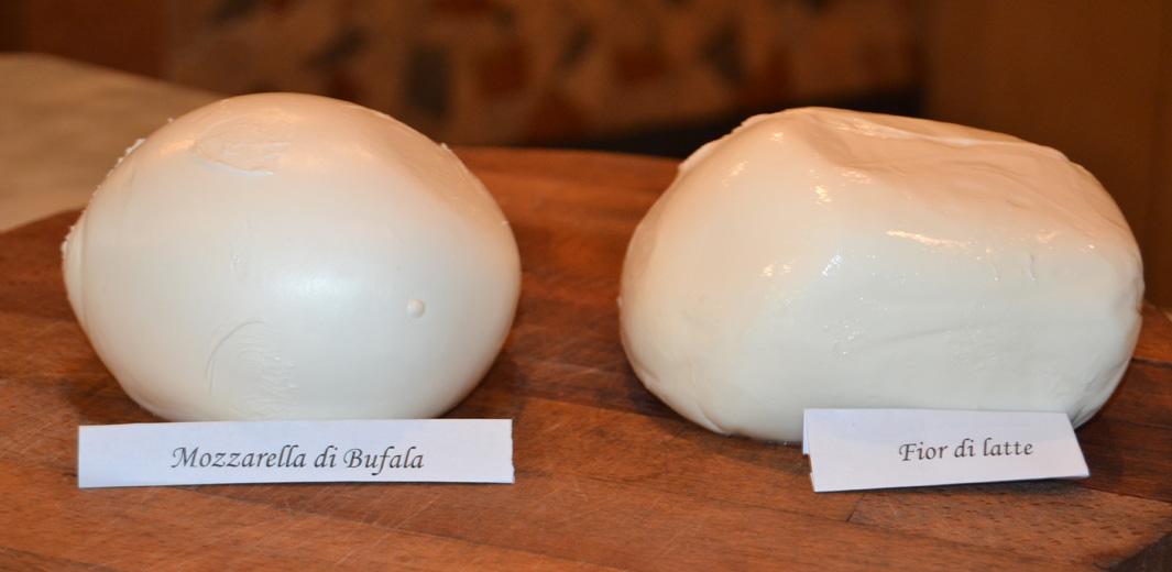 Mozzarella vs Fiordilatte